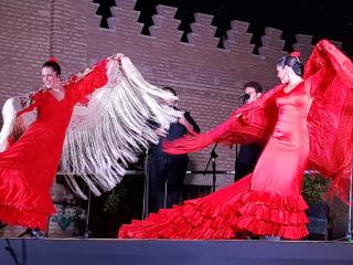 Tardes de flamenco