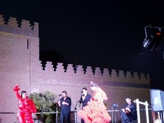 El Museo de la Autonomía regresa en septiembre con el ciclo 'Noches de Flamenco'