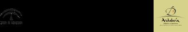Logo Museo de la Autonomía de Andalucía